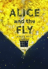 https://litteraturkvalster.wordpress.com/2015/10/07/alice-och-flugan-av-james-rice/